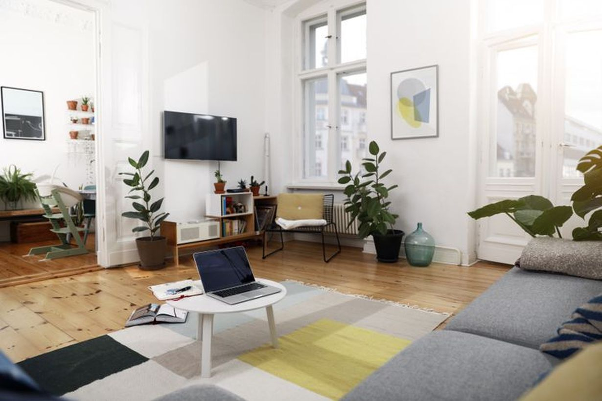 Beautiful easiest houseplants for your apply in living room to create a cozy room