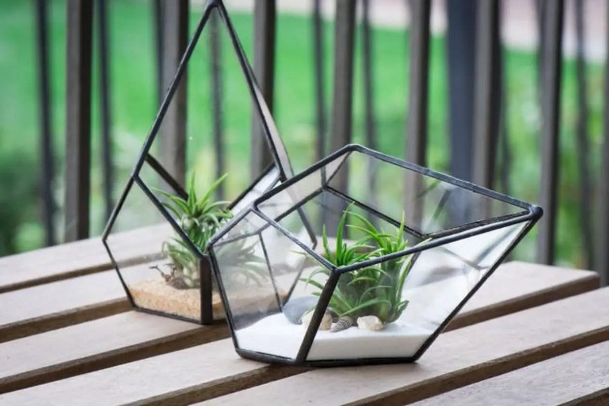 Best terrarium designs with modern geometric terrarium to store succulent for table decoration