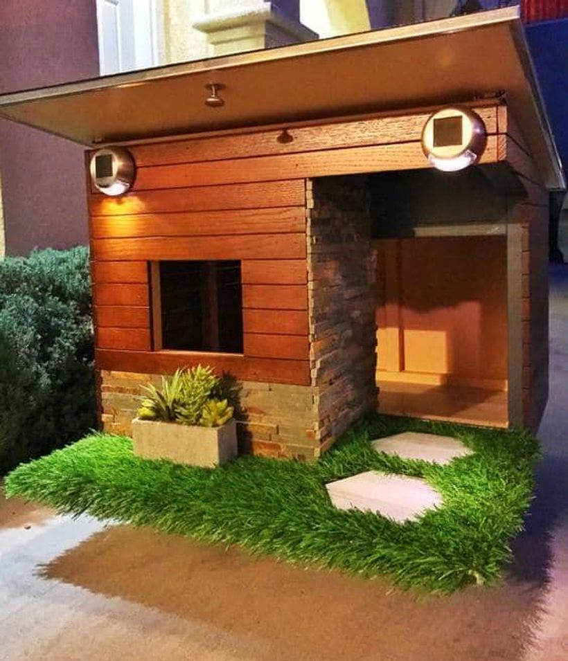 Fancy dog house for your pet