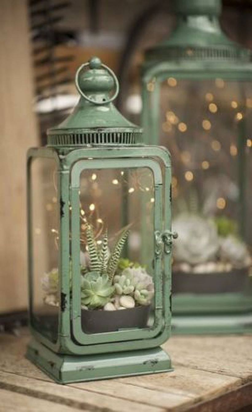 Simple create a succulent lantern from iron former for your home decoration