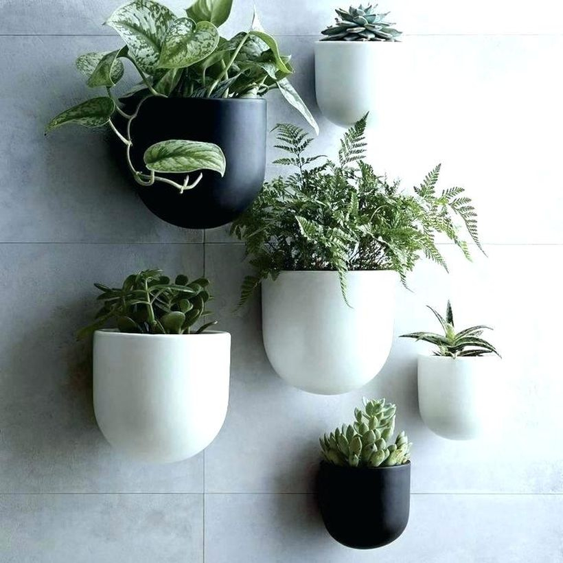 White and black terrarium design pot hanging on the wall for your decaration