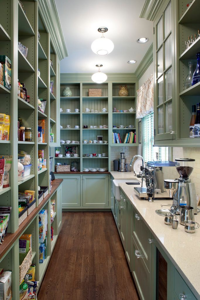 Modern kitchen with shelves pantry in green