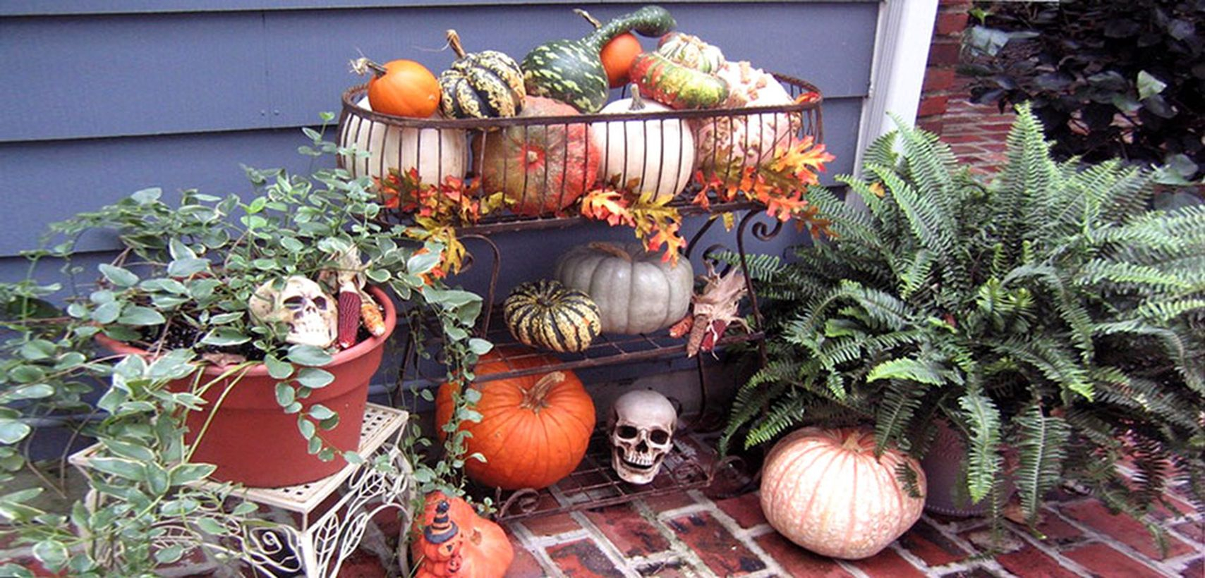 Decoration patio theme halloween with skull and pumpkin