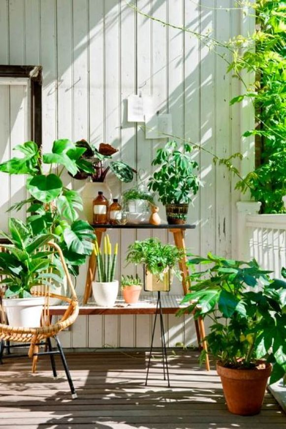 Decorative-plants-t's-not-necessary-to-bring-in-supplies-like-shelves-and-cupboards-to-decorate-your-balcony-garden.