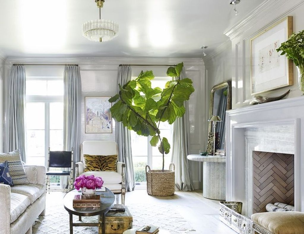 White living room with greenery to perfect your living room