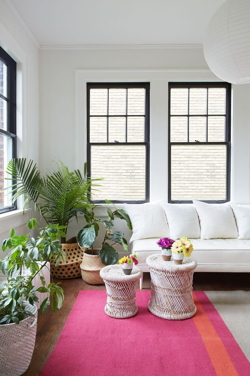 White cushion combine with white sofa nad plants