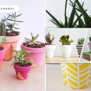 20 posh decorative plant pots to beautify your home fi