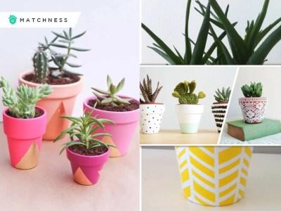 20 posh decorative plant pots to beautify your home fi