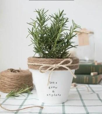 10-diy-flower-pot-ideas-homebnc