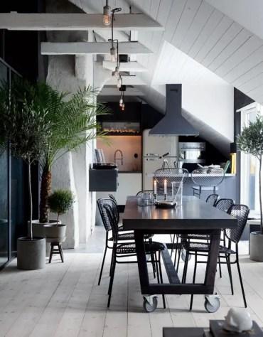 Black-kitchen-house-plants