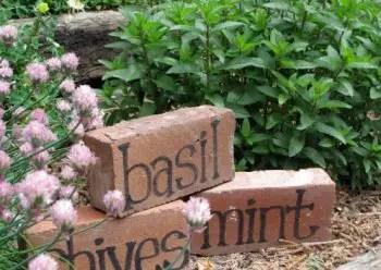 Brick-plant-markers-e1402431197822