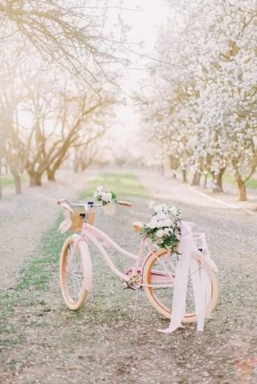 Bicycle-627613b
