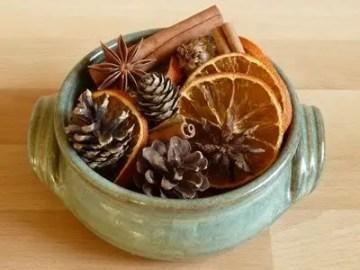 Dried-orange-4