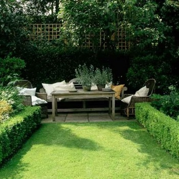 Hedge gardening Turn Your Small Space Into A Large Garden Area With These Genius Space-Savvy Solutions