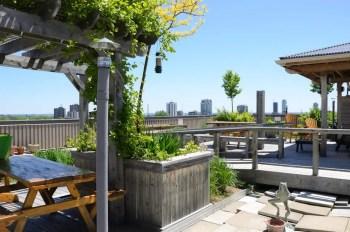 Rooftop garden with bird-feeder