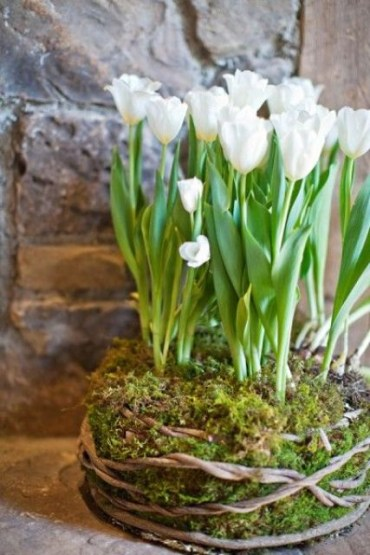 How-to-incorporate-tulips-into-your-spring-decor-ideas-36
