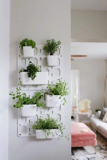 Indoor-garden-4-1