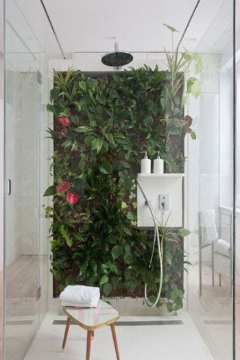 Shower with a bright living wall