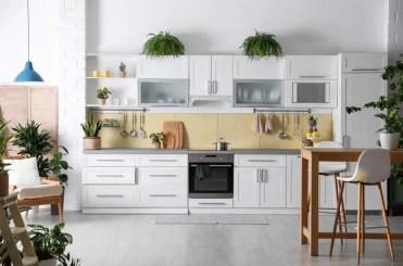 5-add-plants-kitchen-makeover-ideas