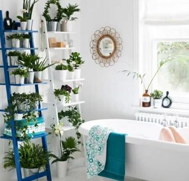 Growing-indoor-plants-in-bathroom