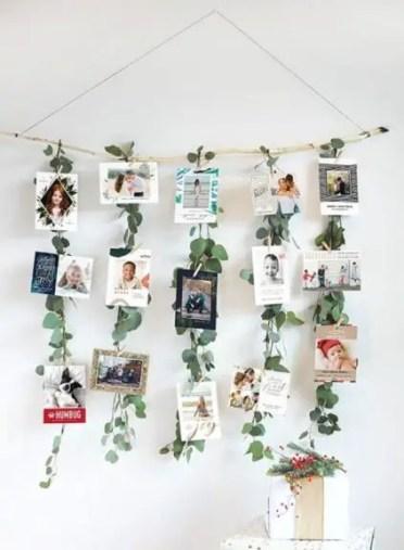 Green-vine-photo-ciip-on-hs