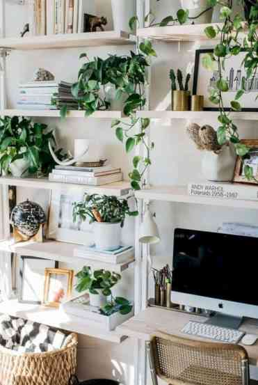 Home-decor-ideas-with-plants-1