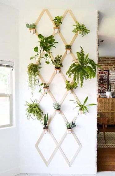 Indoor-garden-7-2