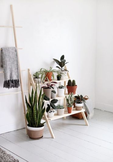 13-a-modern-and-comfy-ladder-plant-stand-for-a-modern-and-fresh-serene-space
