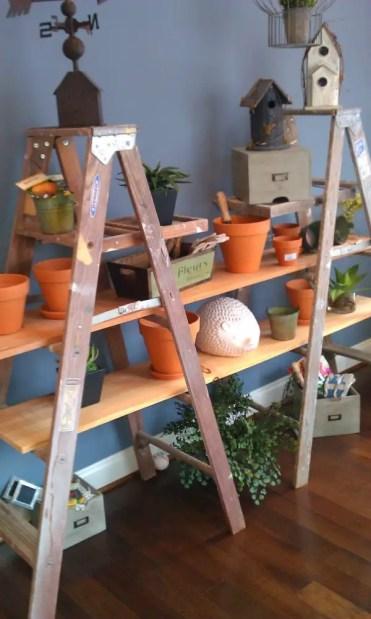 Garden-ladder-shelving