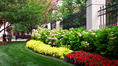 St-louis-commercial-landscaping