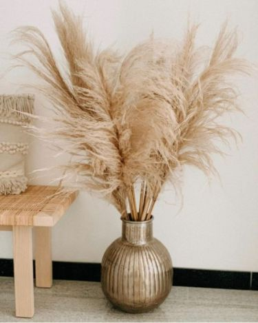1-pampas-grass-decoration-ideas-and-tips9