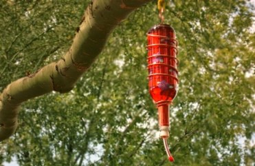 Awesome-diy-wine-bottle-crafts-for-outdoors-5