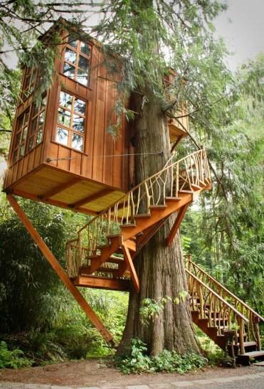 Casa sull'albero-10