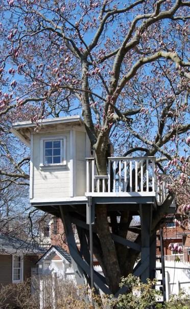 Treehouse-foto-esempio2018-04-30-at-1.40.02-pm-2