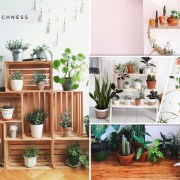 25 plant shelf designs that will be awesome2