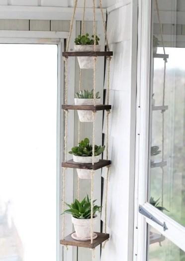 Diy-vertical-plant-hanger