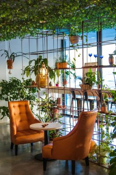 Best-urban-jungle-interior-style-ideas-1001gardens.org-17-728x1092-1