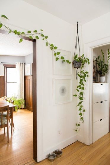 Potted-greenery-covering-the-doorway-will-bring-a-spring-feel-to-the-space-in-an-eco-friendly-way