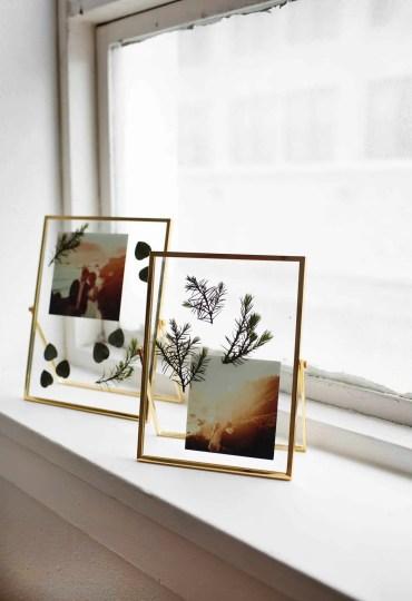 Pressed-plant-photo-frames-
