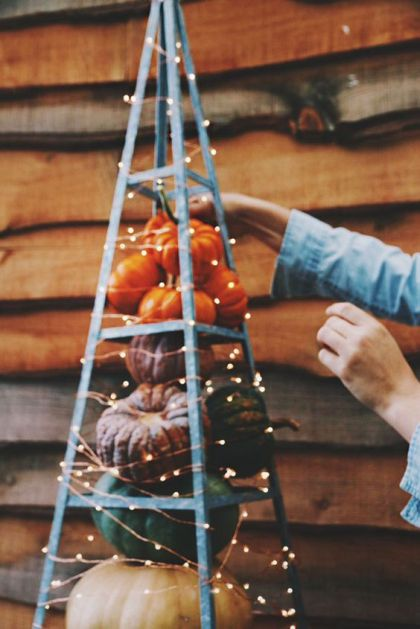 17-colorful-fall-pumpkins-placed-on-a-terrain-and-light-with-lights-1