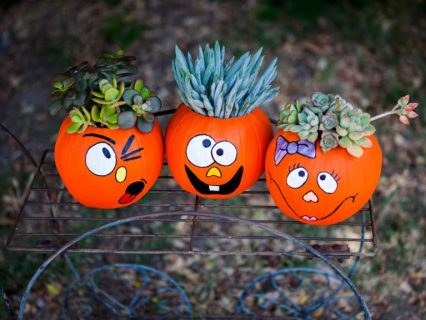 Diy-funny-face-pumpkin-planters-from-the-diy-network-768x576-1