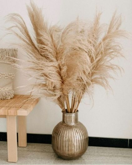 Pampas-grass-decoration-ideas-and-tips9