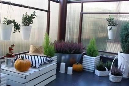 Balkon-herbstlich-dekorieren-eriken-callunen-weiss-gestrichene-holzkiste