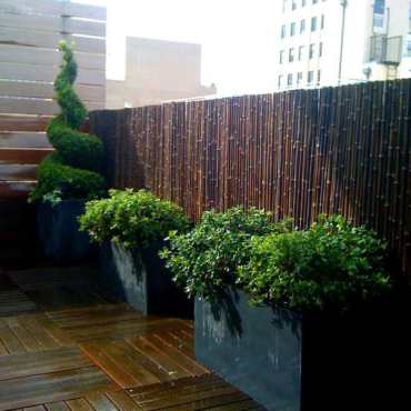 Bamboo-fence-home-designs