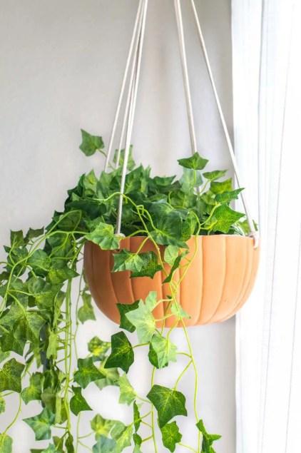 Diy-hanging-pumpkin-planter-pumpkin-crafts-1625588818