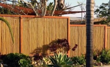 Modern-bamboo-fence-backyard-design