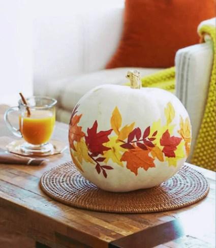 White-pumpkin-leaves