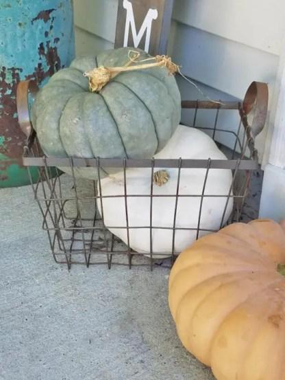 White-pumpkins-green-pumpkins-small-front-porch-ideas-550x733-1