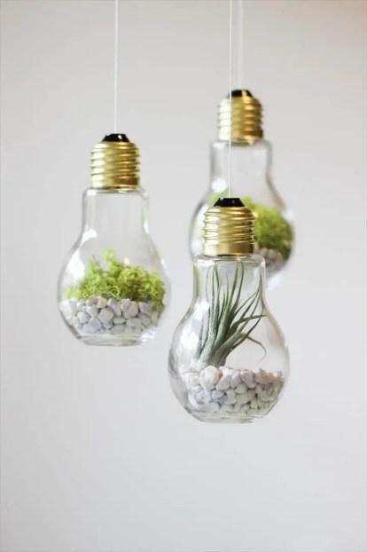 Diy-lightbulb-terrariums