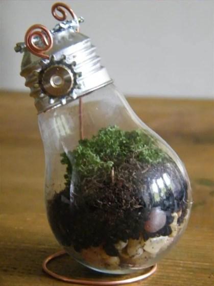 Old-light-bulb-mini-terrariums